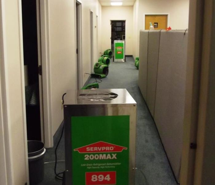 office hallway with cubical walls on the right and SERVPRO fans and Dehumidifiers lined up down the hallway