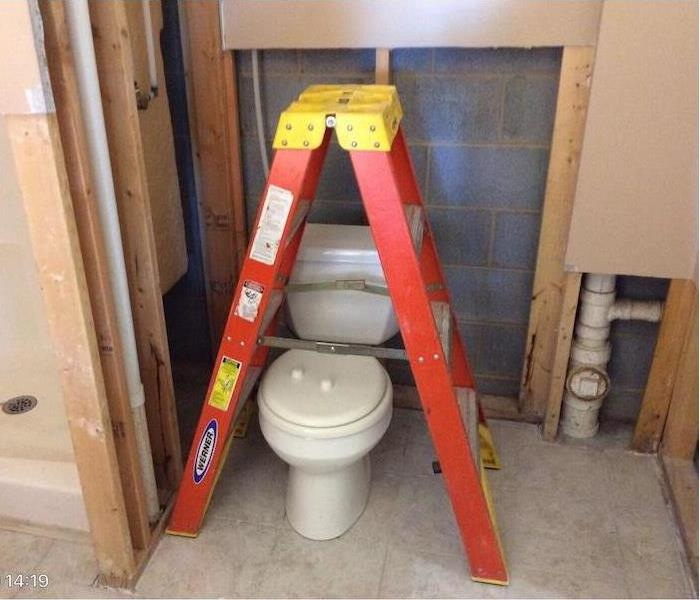 Toilet with ladder and exposed wall interior