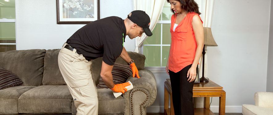 Mocksville, NC carpet upholstery cleaning